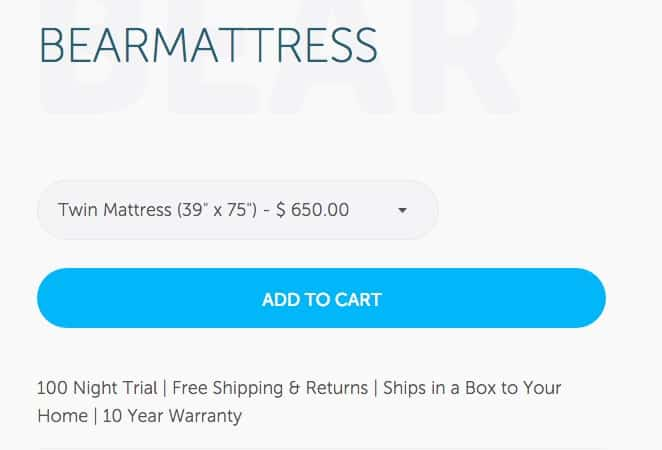 Bear mattress review - order form online