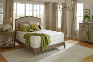 PlushBeds Botanical Bliss Mattress Review - cover shot