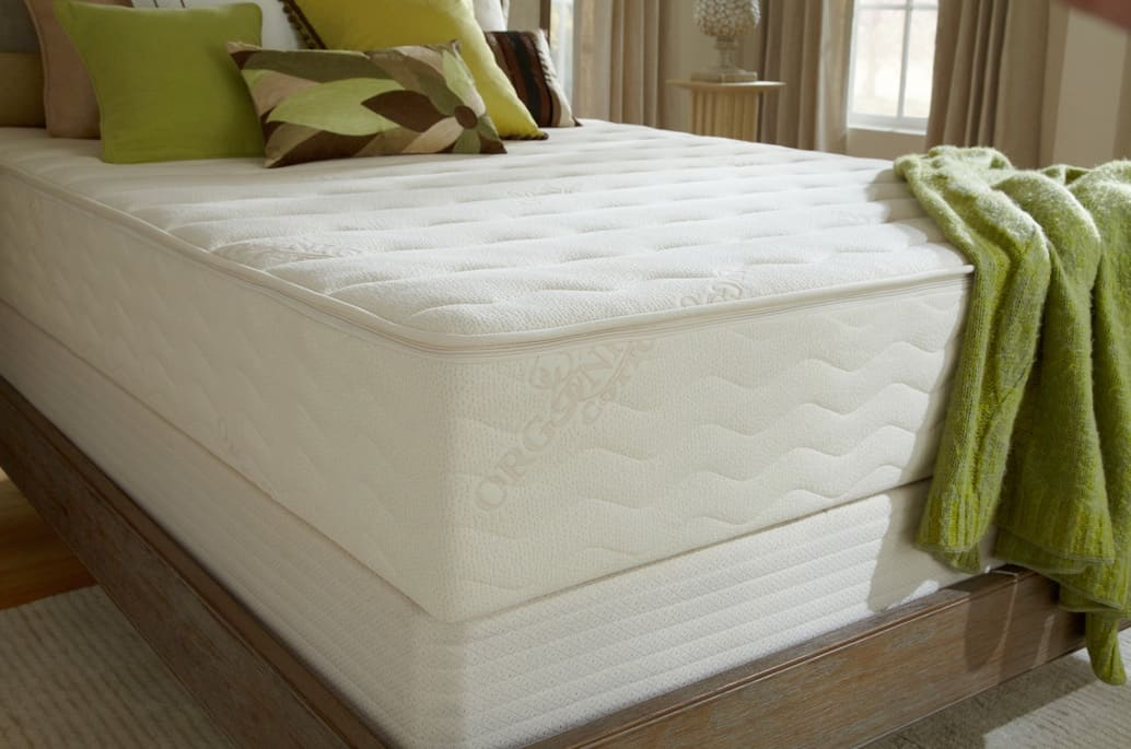 - PlushBeds Botanical Bliss Mattress Review