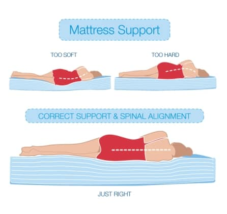 mattress support and spinal alignment