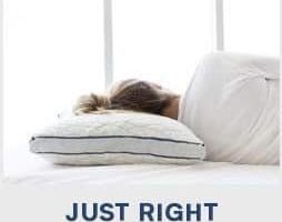 best pillow for back and side sleeper