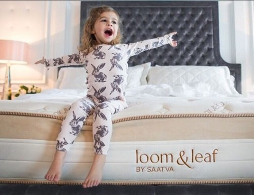 Amerisleep vs Loom and Leaf